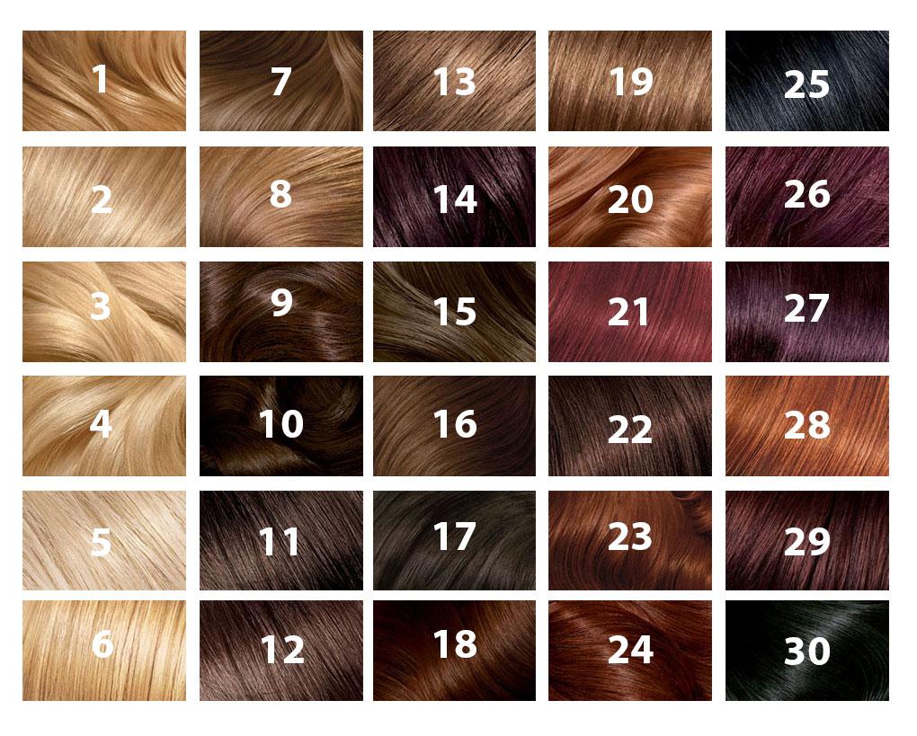 Hair Chart Ball Room Dance Hair
